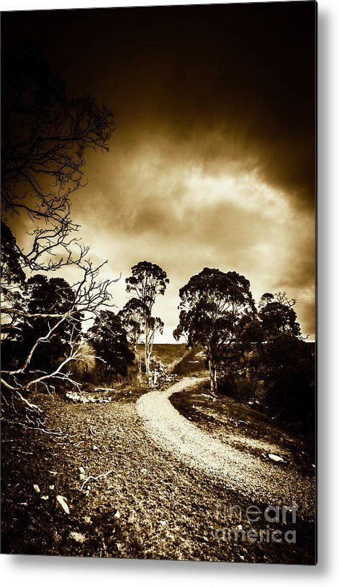 Countryside Metal Print featuring the photograph Dark And Dim Outback Track by Jorgo Photography - Wall Art Gallery