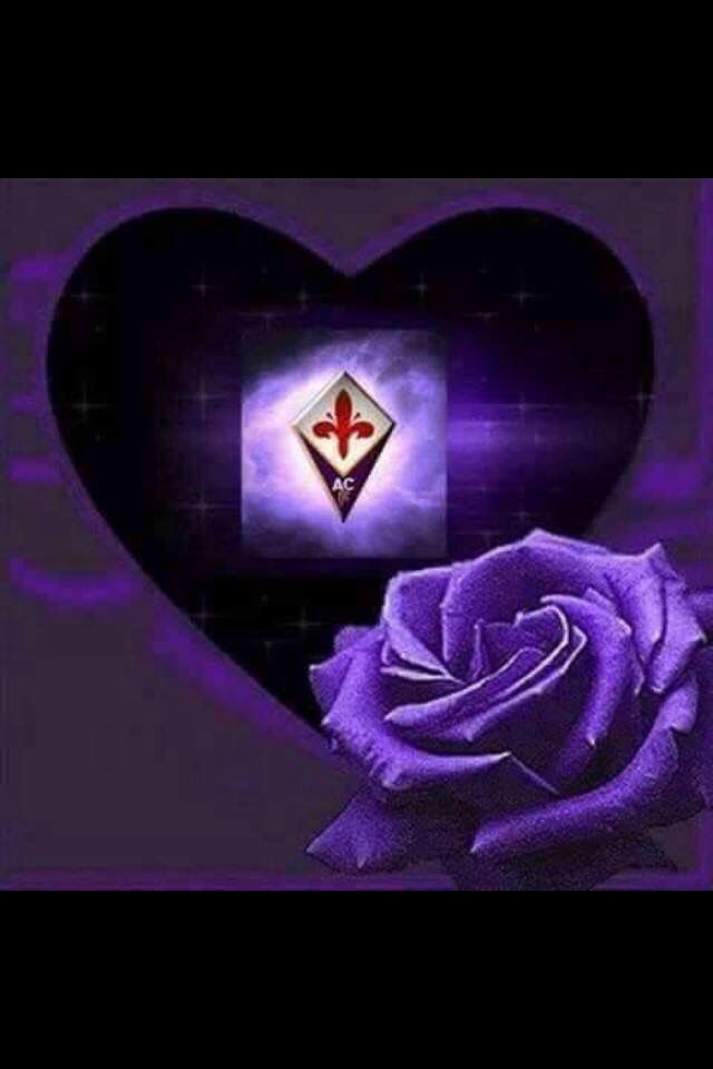 Il viola della Fiorentina!