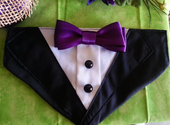TUXEDO COLLAR Bandana Black with Purple Bow Tie by RuffusNRuffles