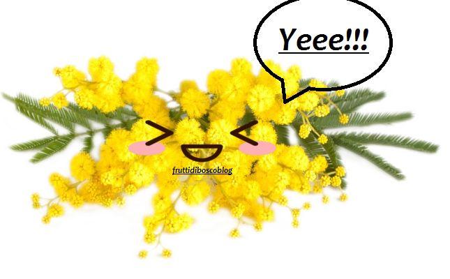 """Salva l'ultrimo tra noi! Salviamo il mazzetto di mimosa! Ho pensato di proporvi questo articolo, se anche voi come me una volta che entrate in possesso di un mazzetto di mimosa non potete stare a pensare che:  """"Senti che profumo!! Guarda che bel giallo!! #fiori #mimosa #esperimenti #giardinaggio"""