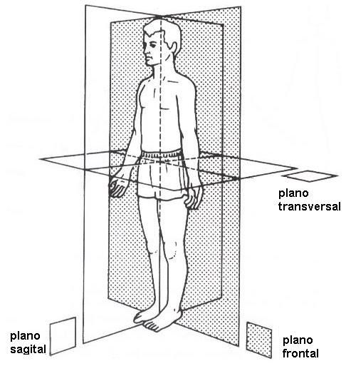 plano frontal