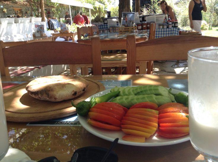 Oven-fresh bread and garden-fresh summer-ripe tomatoes and cucumbers in the shade of an outdoor restaurant in Dalyan.  More Turkish beach food here: https://retireturkey.wordpress.com/2015/03/10/turkish-beach-food/