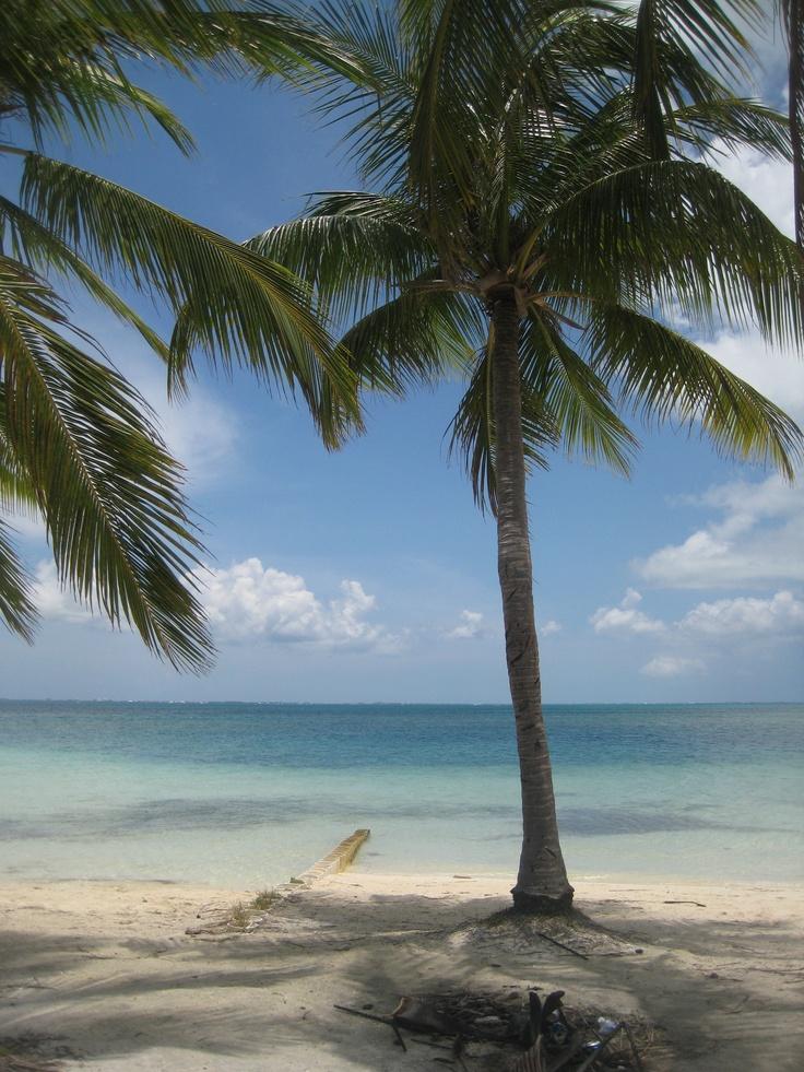 Starfish Point- Grand Caymen Island.   What a beautiful spot!