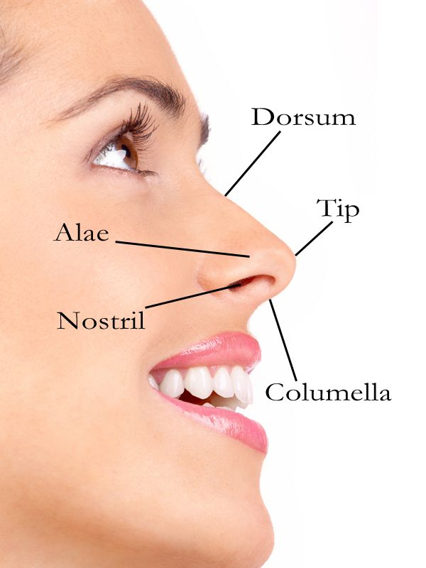 109 best images about Face parts lips on Pinterest | Lip ... |External Lip Anatomy