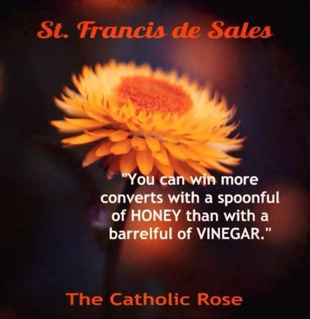 saint francisis desales quote for valentines day - 17 Best images about Catholic Saint Francis de Sales on