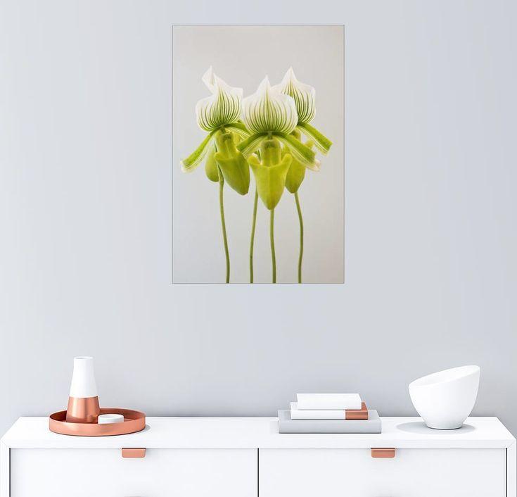 Pin by ladendirekt on Dekoration Pinterest - wandgestaltung mit drei farben