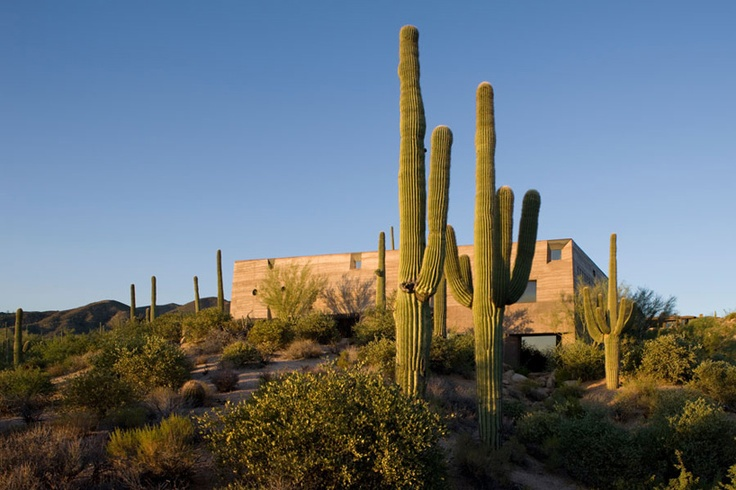 wendell burnette architects: desert courtyard house, arizona