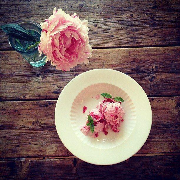 Raspberry Frozen Yoghurt  https://jamtomorrow.jux.com/1317203