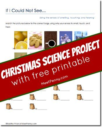 78 Best images about Christmas Science Plans on Pinterest ...
