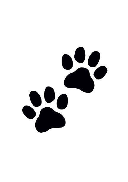Black Paw Prints Vector Illustration Vector Art Illustration Cat Paw Drawing Paw Print Drawing Paw Illustration