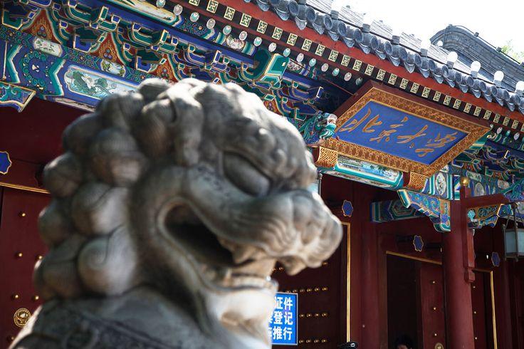 Peking University  Location:Beijing,Urban 985 & 211 Project University Degree Types:Doctoral Master Bachelor Non-Degree