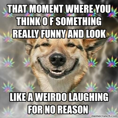 Really Funny Memes | ... you think o f something really funny and look Sep 26 05:32 UTC 2012