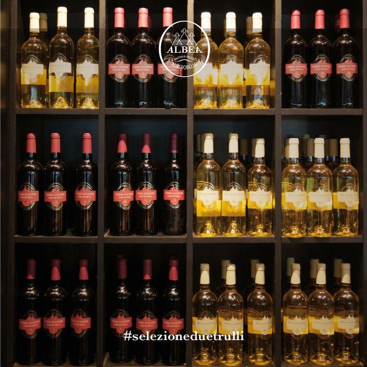 Presentiamo la #SelezioneDueTrulli, vini speciali prodotti dalla #CantinaMuseoAlbea.