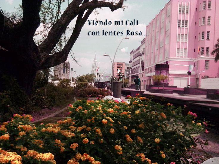 Imagen tomada Feb 25 2015 Jairo Gomez, Cali Valle Colombia