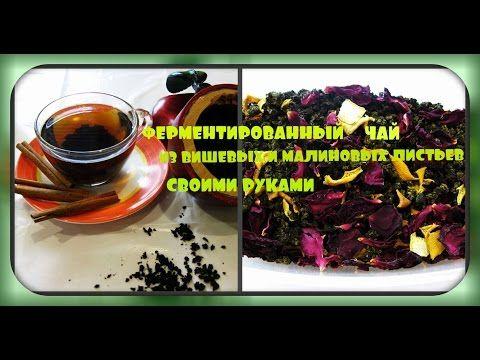 Ферментированный чай из листьев малины и вишни/своими руками/fermented tea, cherry and raspberry - YouTube