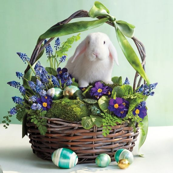 934 best diy easter spring images on pinterest easter ideas 934 best diy easter spring images on pinterest easter ideas spring and easter crafts negle Image collections