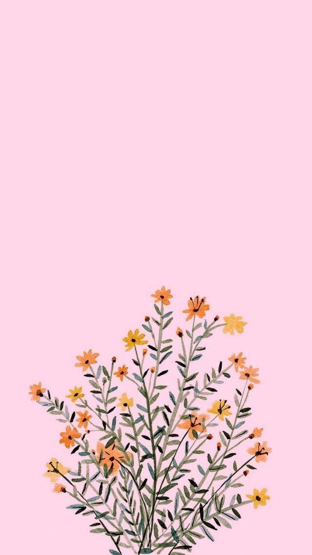 Pinterest Macywillcutt Fuji Macywillcutt Pinterest Pink Flowers Background Flower Backgrounds Wallpaper Iphone Cute