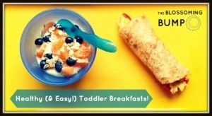 Healthy (& Easy!) Toddler Breakfasts!   The Blossoming Bump