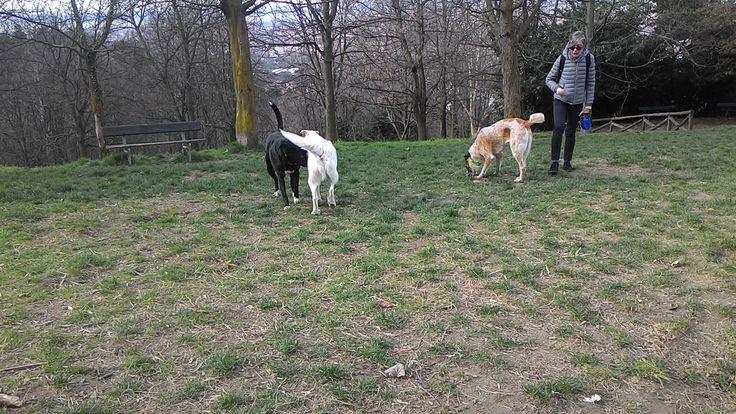 04/03/2016 - Torino con Lai e Margot