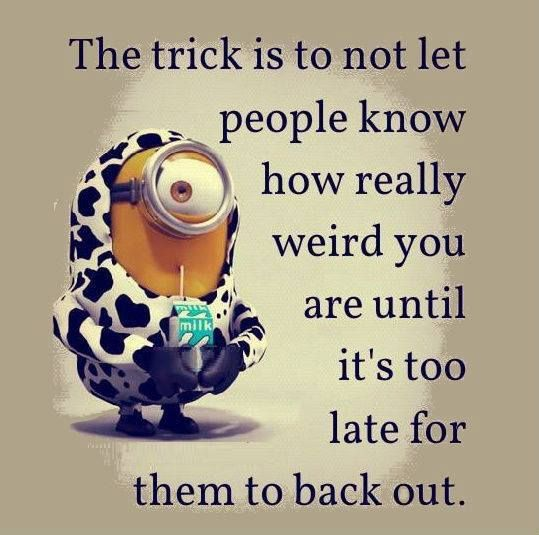 Minions, quote, citat, weird, funny, giggle, funny