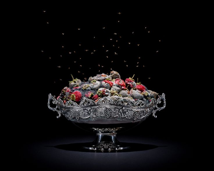 PROJECTS One Third | Strawberries | Klaus Pichler