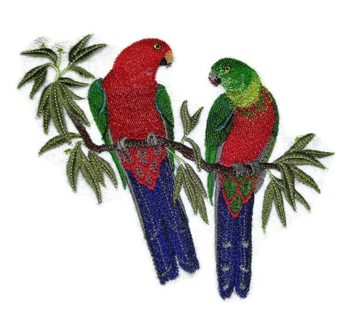 Beyond Vision Mall - Australian King Parrots In Eucalyptus Tree  Embroidered Iron On Patch, CAD19.62 (http://www.beyondvisionmall.com/australian-king-parrots-in-eucalyptus-tree-embroidered-iron-on-patch/)