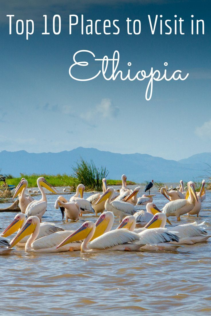 Ethiopia is an incredibly diverse country with tribes unchanged for thousands of years, carved stone churches, amazing people and a stunning landscape.