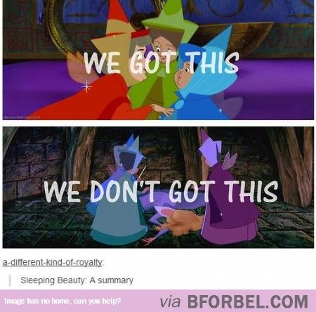 Summary Of Sleeping Beauty… I've always wondered why they didn't just wait one more day.
