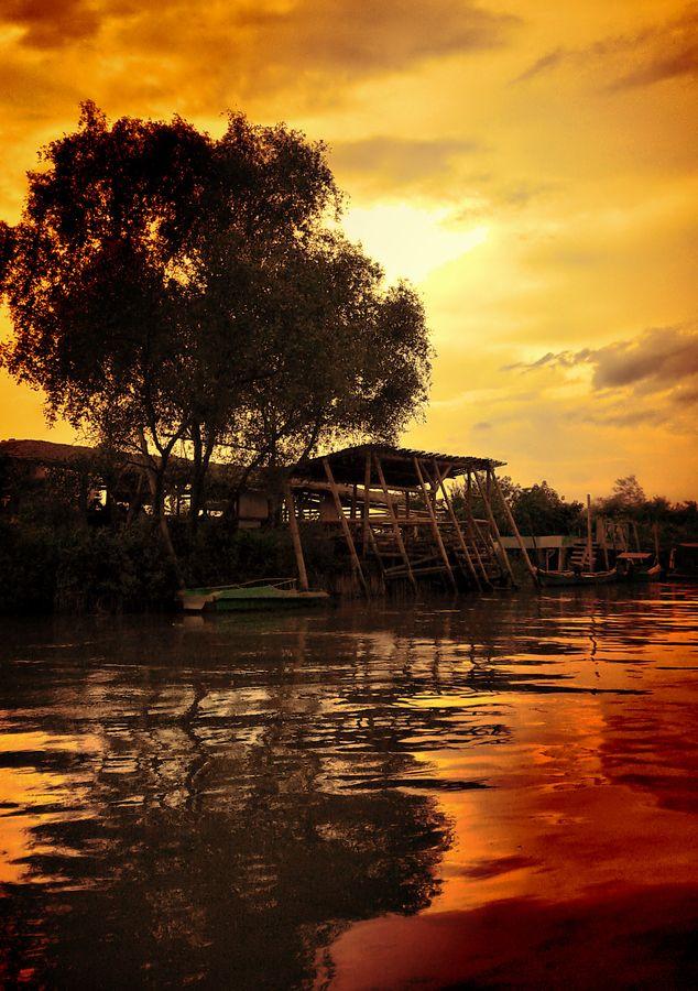 Mangrove, Surabaya, Indonesia