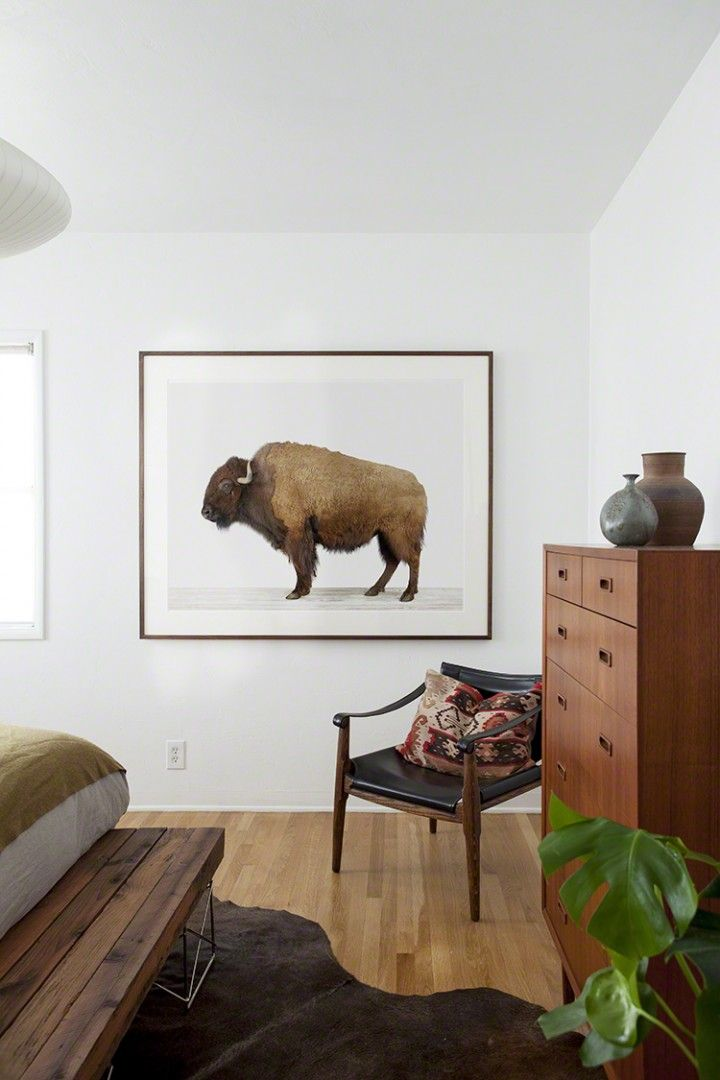 Awesome Buffalo Print goes great against the symmetry of the mid century decor