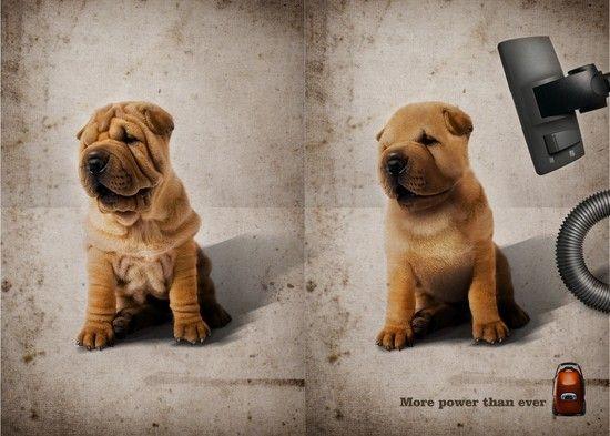 campañas publicitarias creativas 2013 - Buscar con Google