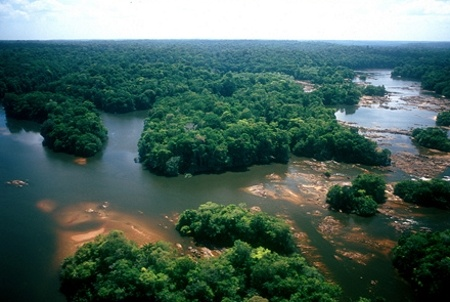 Parque Nacional Montanhas do Tumucumaque - Rio Oiapoque - Limite geográfico entre o Brasil e a Guiana Francesa (à direita)