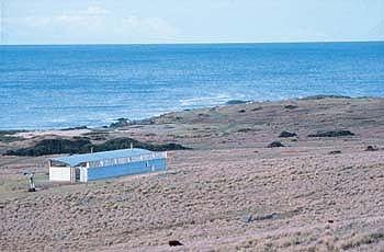 Magney House by Murcutt Captures Australian Sunlight: Ocean Views at the Magney House