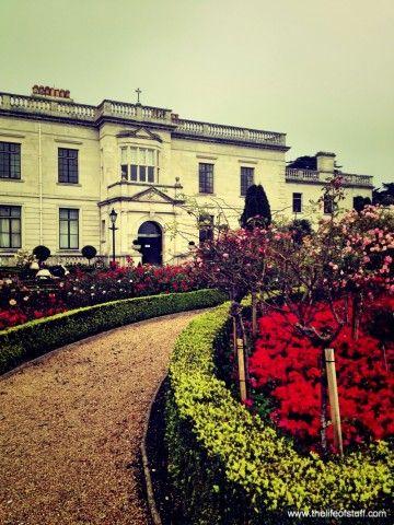 Radisson Blu, St. Helen's Hotel, Dublin - Our Stay in Photo's