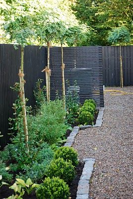 black fence with trees above providing privacy