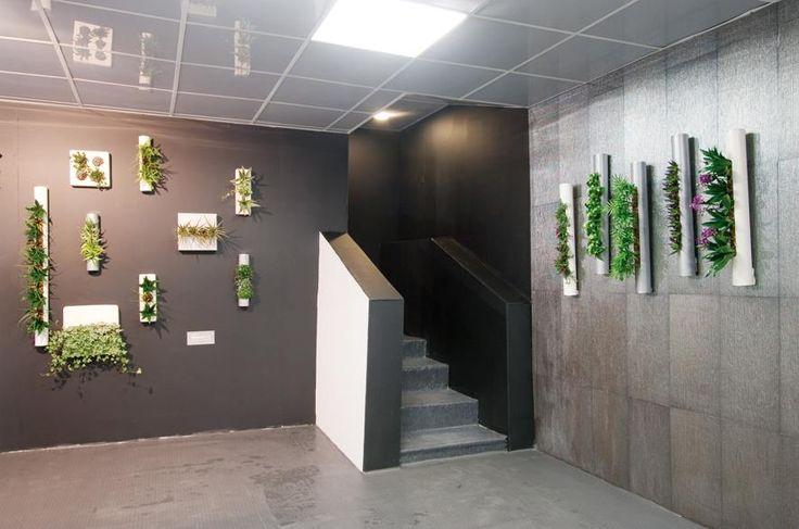 Flowerbox Duvarları