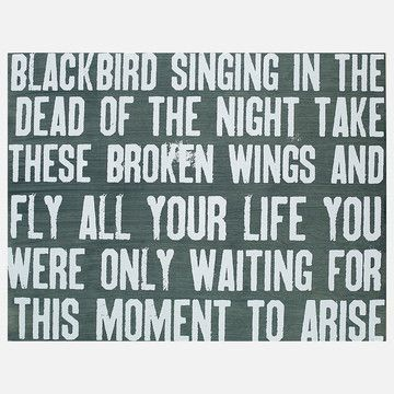 Blackbird Lyrics visit roflburger.com the funny pinterest, where you can create your own memes and post your own images