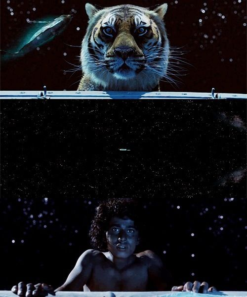 """Even when God seemed to have abandoned me, he was watching. Even when he seemed indifferent to my suffering, he was watching. And when I was beyond all hope of saving, he gave me rest. Then he gave me a sign to continue my journey."" Life of Pi."
