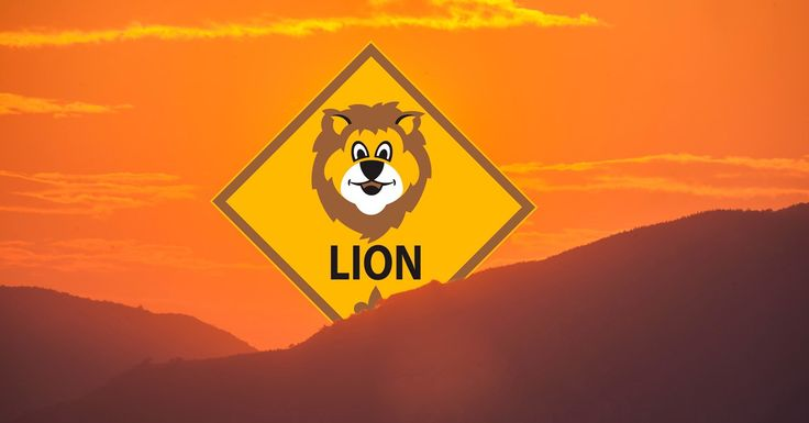 New details released about Lions, the pilot program for kindergarten boys