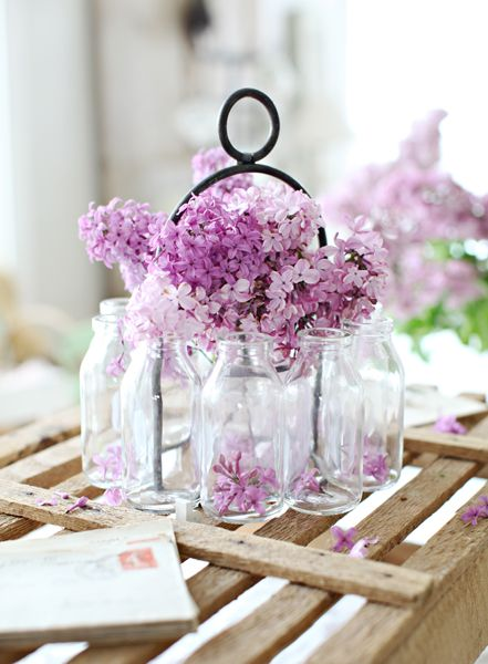 lilac blossoms in tiny bottles