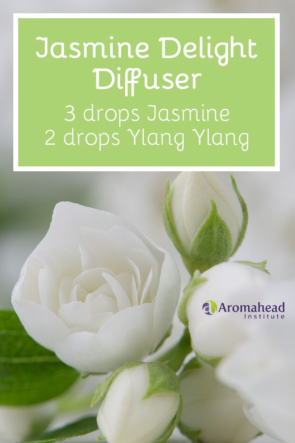 I love using this jasmine and ylang ylang essential oil diffuser blend to help me sleep. Learn more blends for sleep here: http://www.aromahead.com/blog/2015/05/25/favorite-aromatherapy-recipes-sleep/