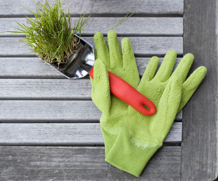 Mondkalender 2017 für den Garten - Tipps zur Gartenpflege