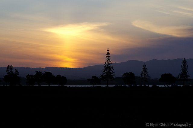 Fergusson Park sunset, Tauranga | © Elyse Childs Photography