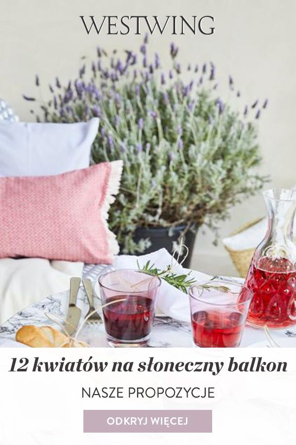 12 Kwiatow Na Sloneczny Balkon Westwing Alcoholic Drinks Alcohol Drinks