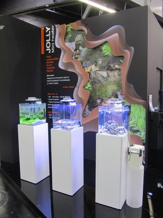 3 different types of Nano Tanks: Terraquarium, Reef and Planted