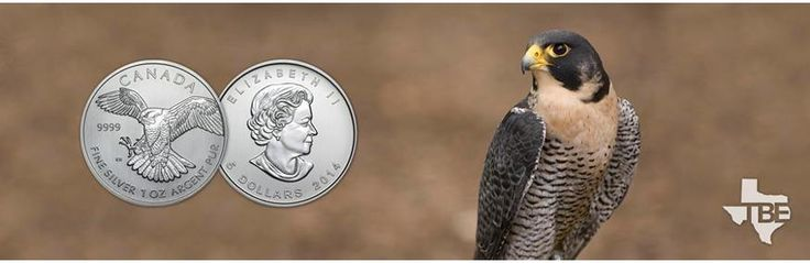 We offer excellent pricing on all Royal Canadian Mint Birds of Prey Series coins available online at TexasBullion.com. Order Now! For more info Call us at (855) 927-5557 or Visit http://bit.ly/2b3yZtj