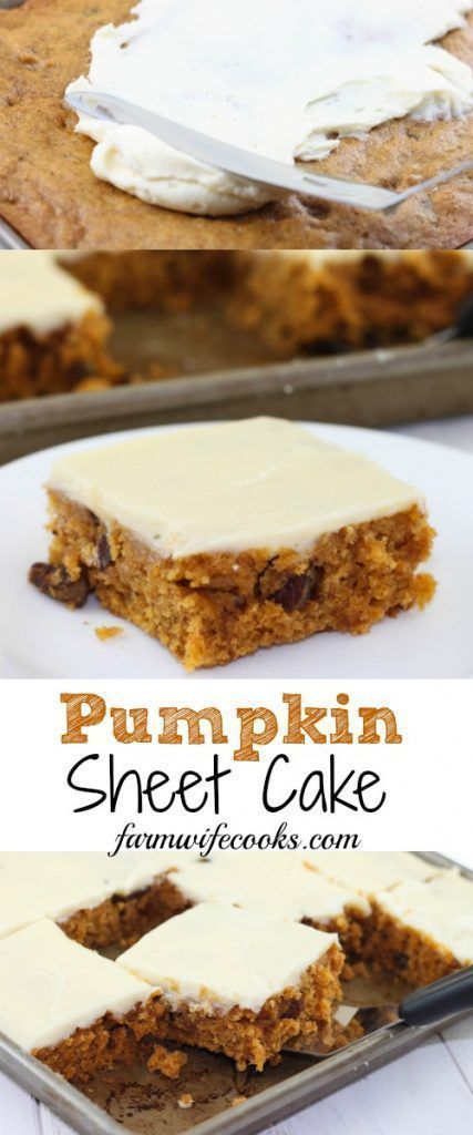 This Pumpkin Sheet Cake is an easy homemade sheet cake that bakes in less than 30 minutes. The cake is topped with cream cheese icing for the perfect fall dessert. #pumpkin #cake