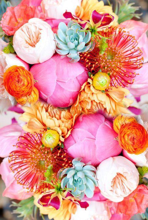Huisjekijken gespot …kleurrijke bloemen
