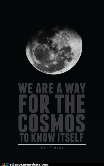 """We are a way for the Cosmos to know itself."""