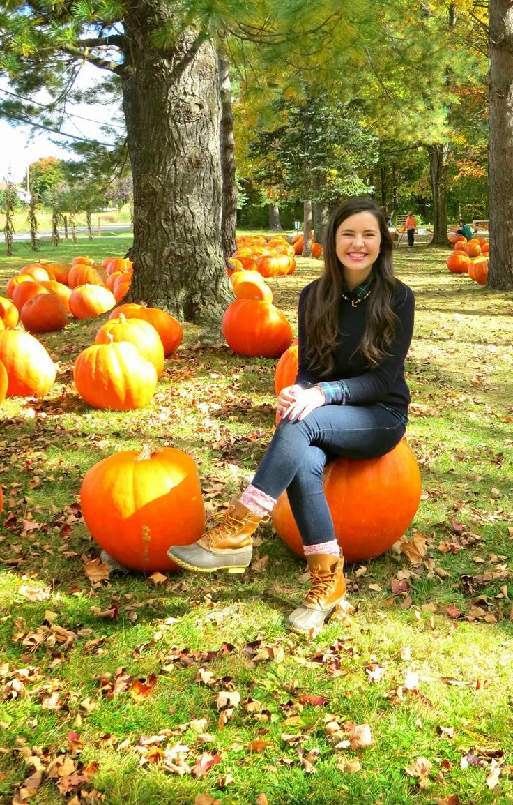 Stonehill Orchard and Pumpkin Picking
